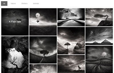 Whale Grid Gallery